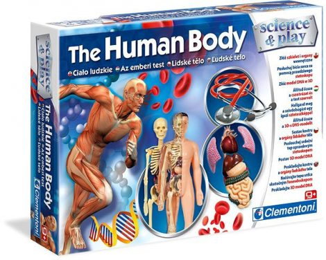 The Human body Az emberi test tudományos játék Clementoni